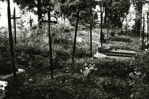 Cmentarz w Pnikucie